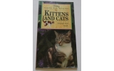 Petlove Caring For Kittens&Cats Book