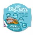 Little Big Paw Dog Steamed Salmon & Veg Dinner 85g