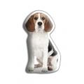 Adorable Beagle Cushion