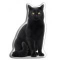 Adorable Black Cat Cushion