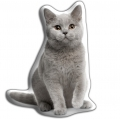 Adorable British Blue Cat Cushion