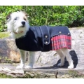 Cosipet Royal Stewart Kilt 25cm - 10&quot; Cosi-Kilt
