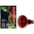 Eurorep red night spot SCREW fittin 100watt
