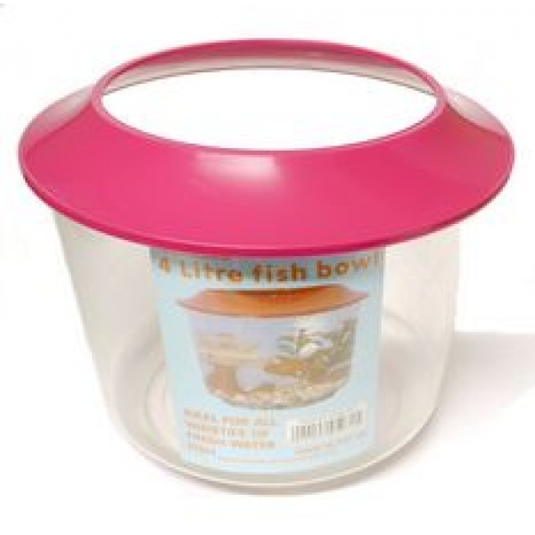Crystal fish bowl and lid standard for Fish bowl drinks near me