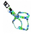 "Hem & Boo Harness 1"" x 34"" (2.5 x 86cm) Blue-1"