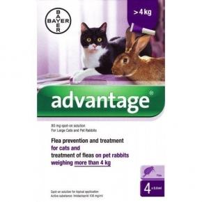 Advantage 80 Flea treatment Over 4kg Large Cat and Rabbit 4 pipette