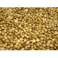 Hemp Seed 12.5kg Johnston and Jeff