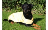 Cool Dog Cooling Coat Extra Large Yellow 80cm