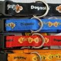 Dogmatic  Collar with Padded Cushion Webbing Black 15 mm x 260-400mm