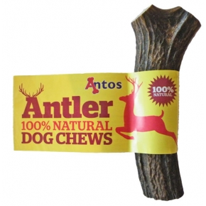 Antos Scottish Antler Small