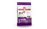 Royal Canin Giant Adult dog 15kg