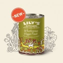 Lilys Kitchen Wholesome Veggie Feast For Dogs 375g Tin