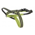 Reflective & Lite up Harness