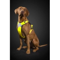 Hurtta Lifeguard Dazzle Harness Yellow 80 - 100Cm