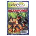 Frozen bloodworm Cubes 100g