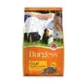 Supa Burgess Excel Guinea Pig Food 2kg