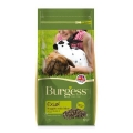 Supa Burgess Excel Adult Rabbit Food 2kg