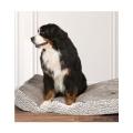 Large Arctic Duvet Dog Bed - Danish Design Boxed