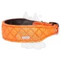 "Do & G Silk Expressions Collar Orange 1.5"" X 11 - 15"""