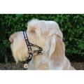 Dogmatic Head Collar Size 3L Black