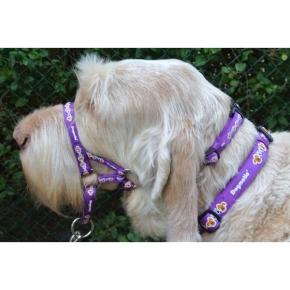 Dogmatic Head Collar Size 3L Purple