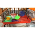 Fop duffy black hamster cage