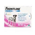 Frontline Dog 20 - 40kg 6 pipette