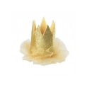 Party Hat Mini Crown Hat Hair Clip House Of Paws