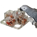 Creative Foraging Carousel - Mentally Stimulating Parrot Toy