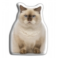 Adorable British Short Haired Cat Cushion