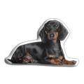 Adorable Dachshund Cushion