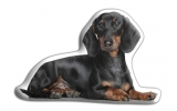 Adorable Dachshund Cushion