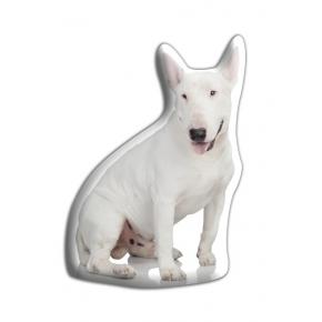 Adorable English Bull Terrier Cushion