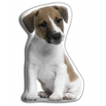 Adorable Jack Russell Cushion