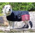 "Cosipet Royal Stewart Kilt 20cm - 8"" Cosi-Kilt Dog Coat"