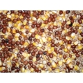 Four Seasons General Economy Pigeon Corn 20kg Johnston and Jeff
