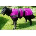 """24"""" - 60cm Dog Coats"""