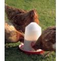 Savic Aviary Feeder 0171  1Litre