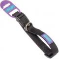 Dog & Co Black Adjustable Collar 1 Inch X 18 Inch - 24 Inch 2.5 X 45 - 60cm Hem & Boo