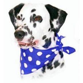 Cosipet Blue Polka Dot Bandana For Dogs