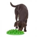 Green Slow Feeder Interactive Company of Animals