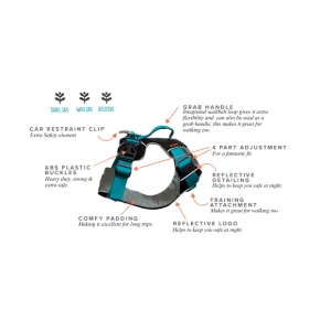 Sotnos Travel Safety & Walking Harness Small
