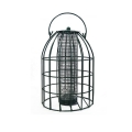 CJ Wildlife Paris Squirrel Resistant Peanut Feeder