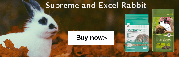 Rabbit food banner excel and supreme